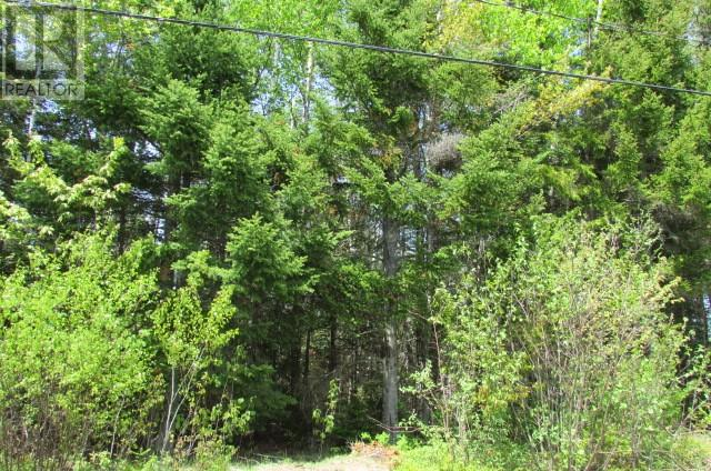 lot 063 Fairview Ave