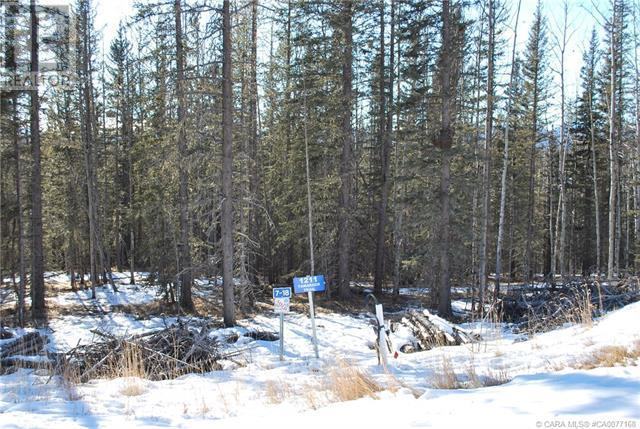 1211 Tamarack Trail